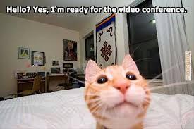 blab video conferencing