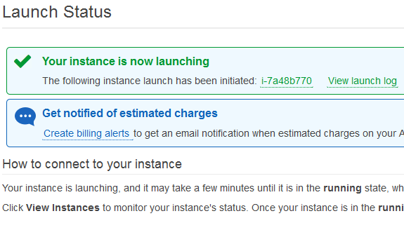aws vps instance launched